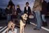 files/_galleries/gallery/apulienreise2008/sonntag/so-023.jpg