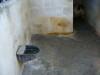 files/_galleries/gallery/sommer2008/p1020003.jpg